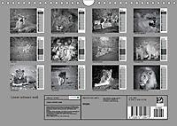 Löwen schwarz weiss (Wandkalender 2019 DIN A4 quer) - Produktdetailbild 13