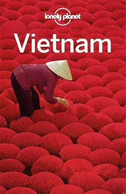 Lonely Planet Reiseführer Vietnam - Iain Stewart pdf epub