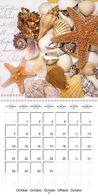 Longing for the sea (Wall Calendar 2019 300 × 300 mm Square) - Produktdetailbild 10