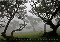 Lorbeerbäume (Wandkalender 2019 DIN A3 quer) - Produktdetailbild 8