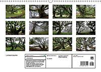 Lorbeerbäume (Wandkalender 2019 DIN A3 quer) - Produktdetailbild 13