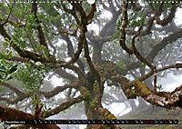 Lorbeerbäume (Wandkalender 2019 DIN A3 quer) - Produktdetailbild 12