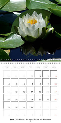 Lotus Flower - Mystical Beauty (Wall Calendar 2019 300 × 300 mm Square) - Produktdetailbild 2