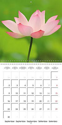 Lotus Flower - Mystical Beauty (Wall Calendar 2019 300 × 300 mm Square) - Produktdetailbild 9