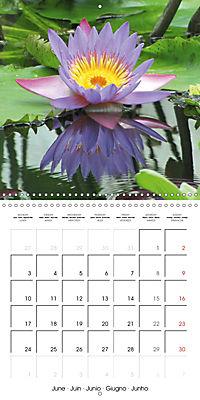 Lotus Flower - Mystical Beauty (Wall Calendar 2019 300 × 300 mm Square) - Produktdetailbild 6