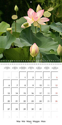 Lotus Flower - Mystical Beauty (Wall Calendar 2019 300 × 300 mm Square) - Produktdetailbild 5