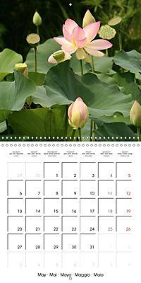 Lotus Flower - Mystical Beauty (Wall Calendar 2019 300 × 300 mm Square) - Produktdetailbild 5