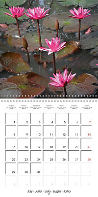 Lotus Flower - Mystical Beauty (Wall Calendar 2019 300 × 300 mm Square) - Produktdetailbild 7