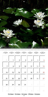 Lotus Flower - Mystical Beauty (Wall Calendar 2019 300 × 300 mm Square) - Produktdetailbild 10