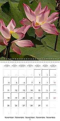 Lotus Flower - Mystical Beauty (Wall Calendar 2019 300 × 300 mm Square) - Produktdetailbild 11