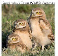 Louise Lindsey Merrick Natural Environment Series: Greg Lasley's Texas Wildlife Portraits, Greg W. Lasley