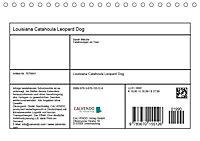 Louisiana Catahoula Leopard Dog 2019 (Tischkalender 2019 DIN A5 quer) - Produktdetailbild 13