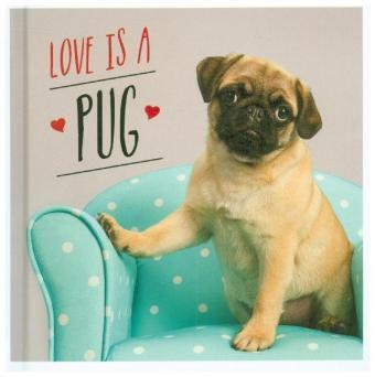 Love is a Pug, Charlie Ellis