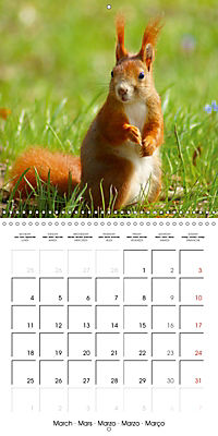 Lovely Squirrel (Wall Calendar 2019 300 × 300 mm Square) - Produktdetailbild 3