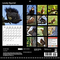 Lovely Squirrel (Wall Calendar 2019 300 × 300 mm Square) - Produktdetailbild 13