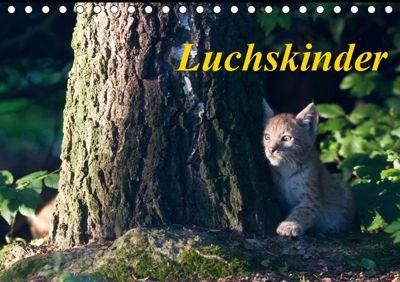 Luchskinder (Tischkalender 2019 DIN A5 quer), Wilfried Martin