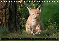 Luchskinder (Tischkalender 2019 DIN A5 quer) - Produktdetailbild 10