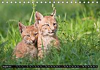 Luchskinder (Tischkalender 2019 DIN A5 quer) - Produktdetailbild 8