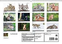 Luchskinder (Wandkalender 2019 DIN A3 quer) - Produktdetailbild 13