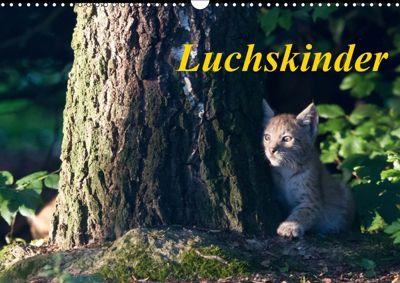 Luchskinder (Wandkalender 2019 DIN A3 quer), Wilfried Martin