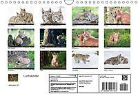 Luchskinder (Wandkalender 2019 DIN A4 quer) - Produktdetailbild 13