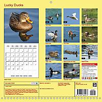 Lucky Ducks (Wall Calendar 2019 300 × 300 mm Square) - Produktdetailbild 13