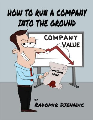 Lulu.com: How to Run a Company Into the Ground, Radomir Djenadic