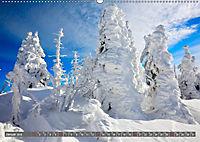 Lust auf NaTour - Bäume (Wandkalender 2019 DIN A2 quer) - Produktdetailbild 1
