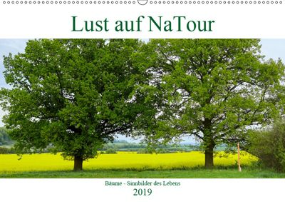 Lust auf NaTour - Bäume (Wandkalender 2019 DIN A2 quer), Andreas Riedmiller
