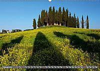 Lust auf NaTour - Bäume (Wandkalender 2019 DIN A2 quer) - Produktdetailbild 2