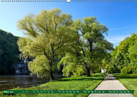 Lust auf NaTour - Bäume (Wandkalender 2019 DIN A2 quer) - Produktdetailbild 3
