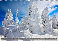 Lust auf NaTour - Bäume (Wandkalender 2019 DIN A3 quer) - Produktdetailbild 1