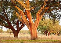 Lust auf NaTour - Bäume (Wandkalender 2019 DIN A3 quer) - Produktdetailbild 6