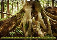 Lust auf NaTour - Bäume (Wandkalender 2019 DIN A3 quer) - Produktdetailbild 8
