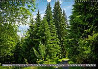 Lust auf NaTour - Bäume (Wandkalender 2019 DIN A3 quer) - Produktdetailbild 10