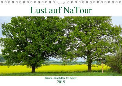 Lust auf NaTour - Bäume (Wandkalender 2019 DIN A4 quer), Andreas Riedmiller