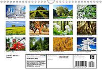 Lust auf NaTour - Bäume (Wandkalender 2019 DIN A4 quer) - Produktdetailbild 13