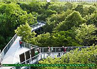 Lust auf NaTour - Nationalpark Hainich (Wandkalender 2019 DIN A3 quer) - Produktdetailbild 7