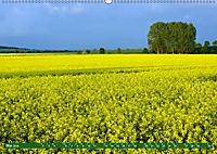 Lust auf NaTour - Nationalpark Hainich (Wandkalender 2019 DIN A2 quer) - Produktdetailbild 5