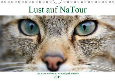 Lust auf NaTour - Nationalpark Hainich (Wandkalender 2019 DIN A4 quer), Andreas Riedmiller