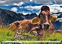 Lustig und verrückt - der ganz andere Tierkalender (Wandkalender 2019 DIN A3 quer) - Produktdetailbild 5