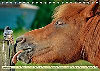 Lustig und verrückt - der ganz andere Tierkalender (Tischkalender 2019 DIN A5 quer) - Produktdetailbild 1