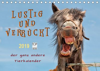 Lustig und verrückt - der ganz andere Tierkalender (Tischkalender 2019 DIN A5 quer), Peter Roder