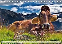 Lustig und verrückt - der ganz andere Tierkalender (Tischkalender 2019 DIN A5 quer) - Produktdetailbild 5
