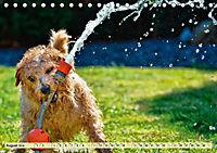 Lustig und verrückt - der ganz andere Tierkalender (Tischkalender 2019 DIN A5 quer) - Produktdetailbild 8