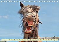 Lustig und verrückt - der ganz andere Tierkalender (Tischkalender 2019 DIN A5 quer) - Produktdetailbild 11