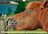 Lustig und verrückt - der ganz andere Tierkalender (Wandkalender 2019 DIN A4 quer) - Produktdetailbild 1