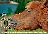 Lustig und verrückt - der ganz andere Tierkalender (Wandkalender 2019 DIN A2 quer) - Produktdetailbild 1