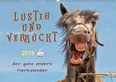 Lustig und verrückt - der ganz andere Tierkalender (Wandkalender 2019 DIN A2 quer), Peter Roder