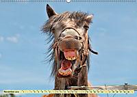 Lustig und verrückt - der ganz andere Tierkalender (Wandkalender 2019 DIN A2 quer) - Produktdetailbild 11